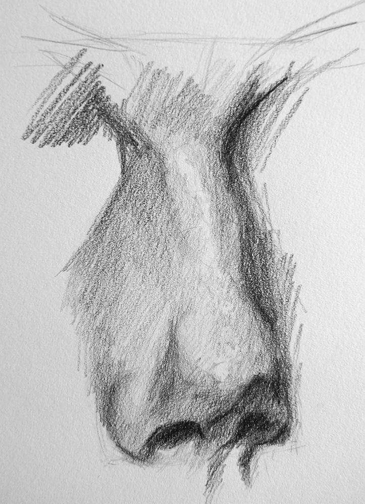 Comment dessiner un nez ?